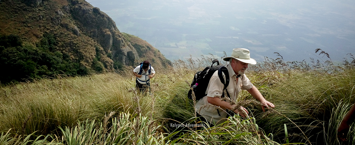 Western Ghats Trekking Holiday