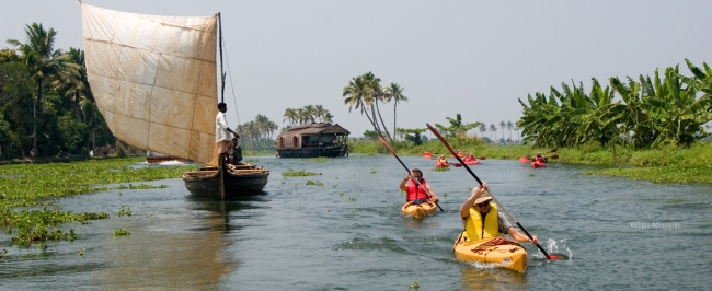 Backwater Kayaking Expedition In Kerala