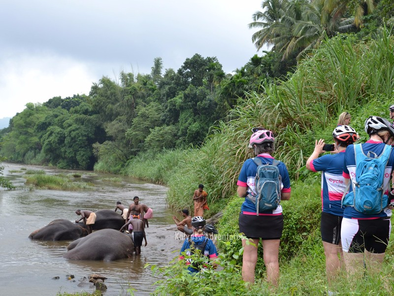 Kalypso Cycling Holiday in Kerala 4