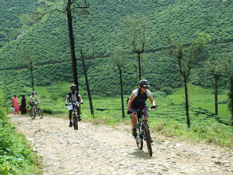 Kalypso Cycling Holiday in Kerala 3