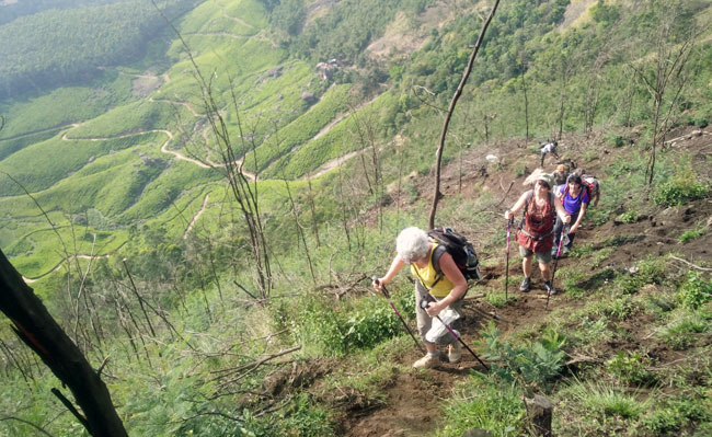 Munnar - Kalypso Adventures Hiking